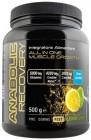Anabolic Recovery 500 gr. Net Integratori
